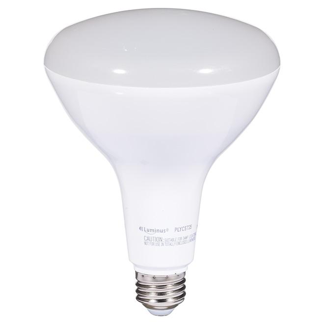 Ampoule DEL BR40 17 W, intensité variable, lumière du jour