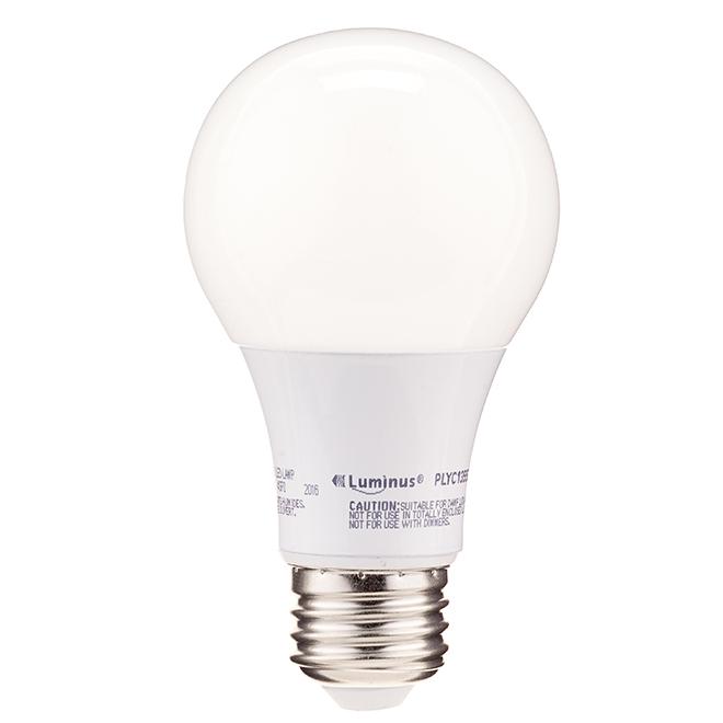 Ampoule DEL A19 9 W, non variable, lumière du jour, 2/pqt