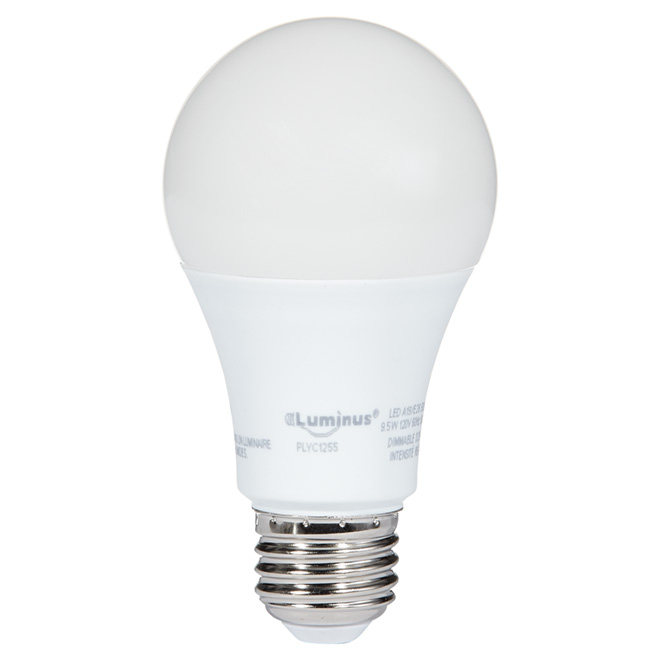 Ampoule DEL A19, 9,5 W, lumière de jour