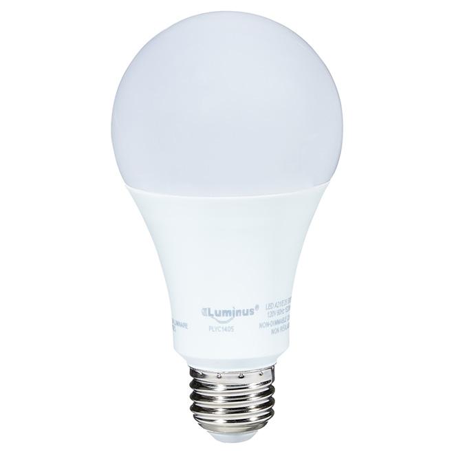 Ampoule DEL, A21, lumière du jour