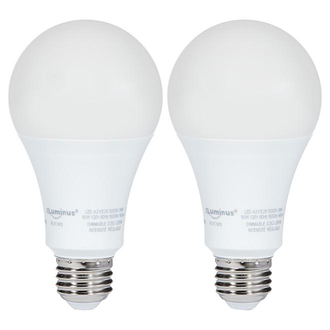 Ampoule DEL A21 16 W, intensité variable, lumière du jour