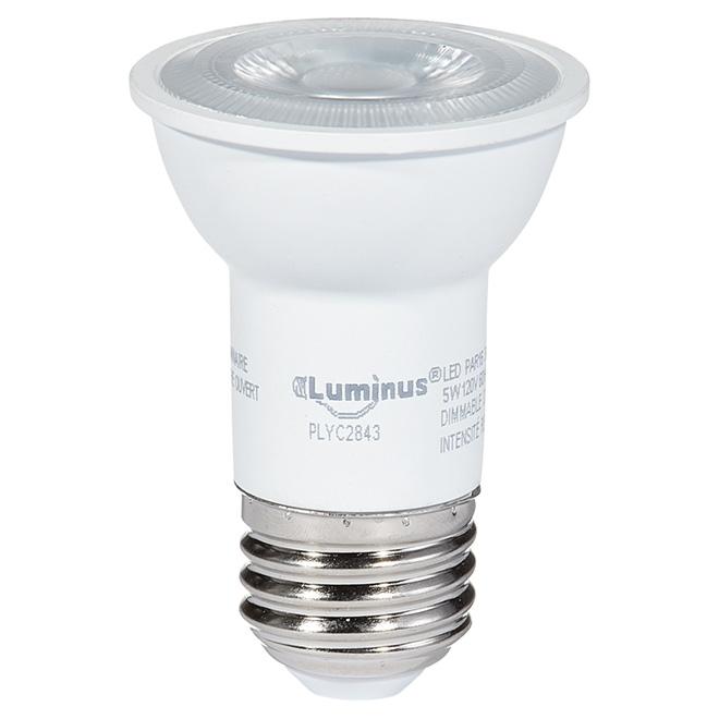 Ampoule DEL PAR16, 5W, intensité variable, blanc brillant