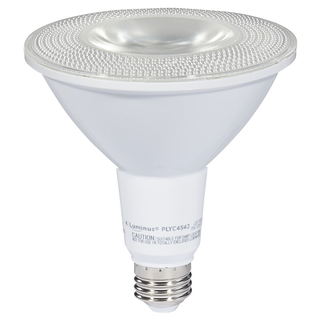 Ampoule DEL PAR38 15 W, intensité variable, blanc brillant