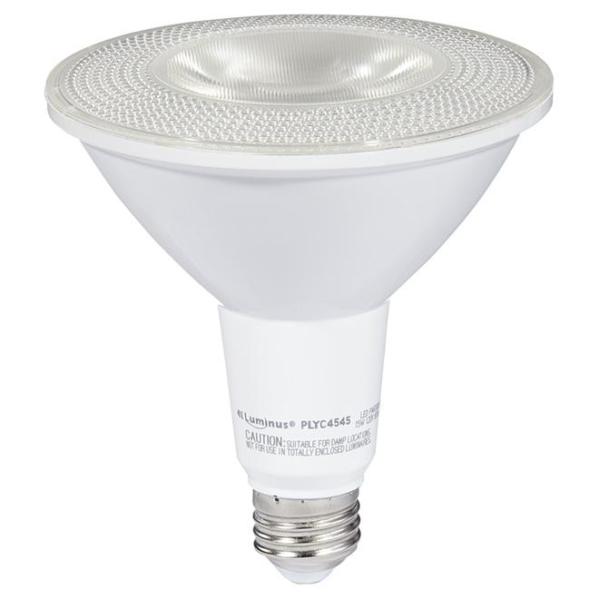 Ampoule DEL PAR38 17 W, intensité variable, lumière du jour