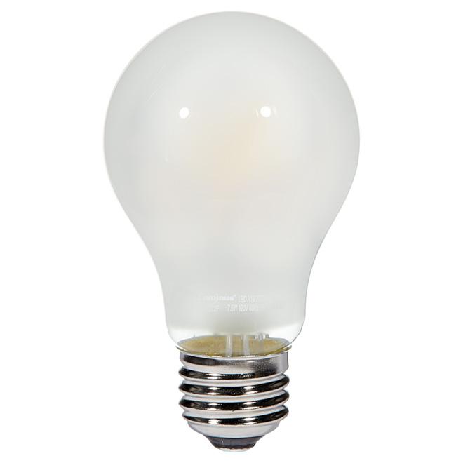 Ampoule DEL A19 7,5 W, intensité variable, blanc doux