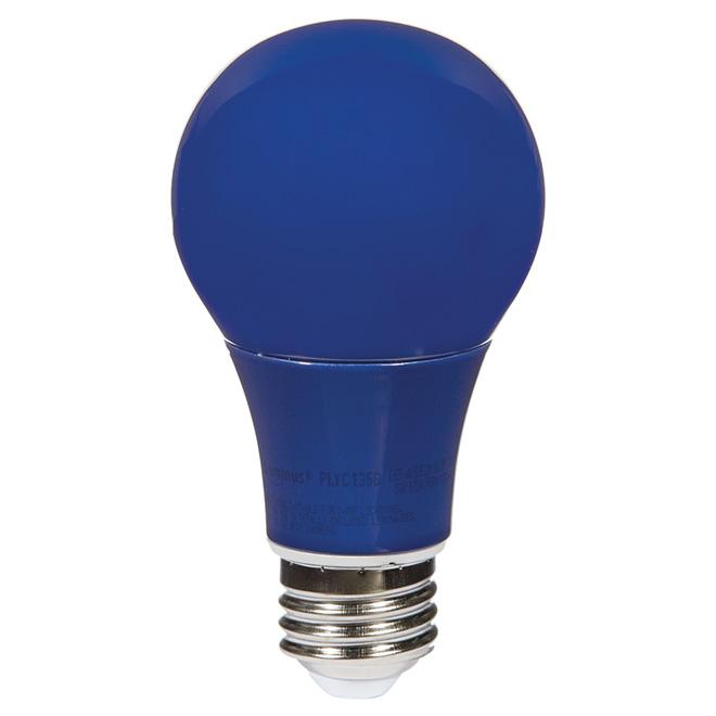 Ampoule DEL A19 6 W, intensité non-variable, bleu