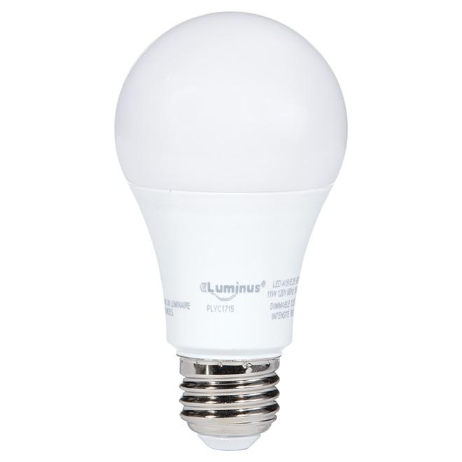 Ampoule DEL A19 11 W, intensité variable, lumière du jour