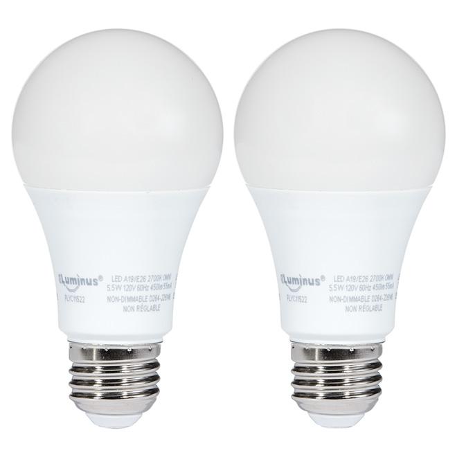 Ampoule DEL A19 5,5 W, non-variable, blanc doux, 2 pqt