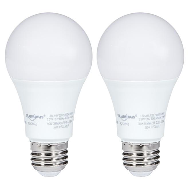 Ampoule DEL A19 5,5 W, intensité non variable, lumière du jour
