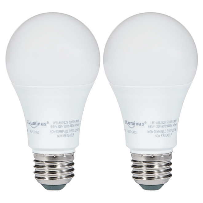 Ampoule DEL 9,5W A19, non variable, lumière du jour, 2/pqt