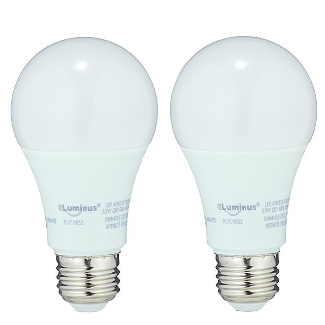 Ampoule DEL A19 5,5 W, variable, lumière du jour, 2/pqt