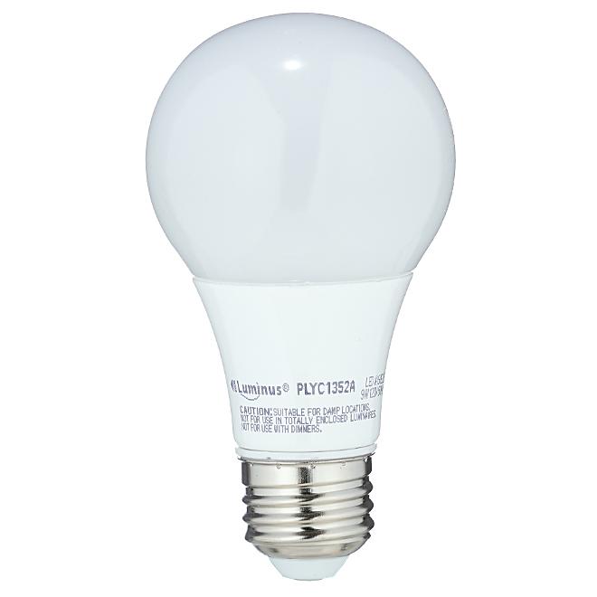 Ampoule DEL A19, 9 W, blanc chaud