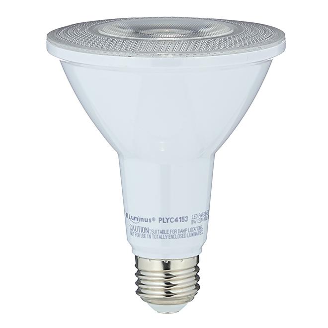 Ampoule DEL, PAR30, blanc brillant