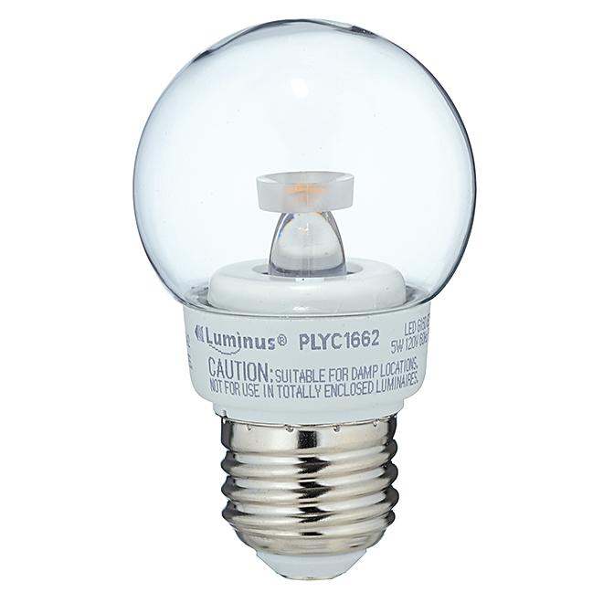 Ampoule DEL G16/5W, intensité variable, blanc doux