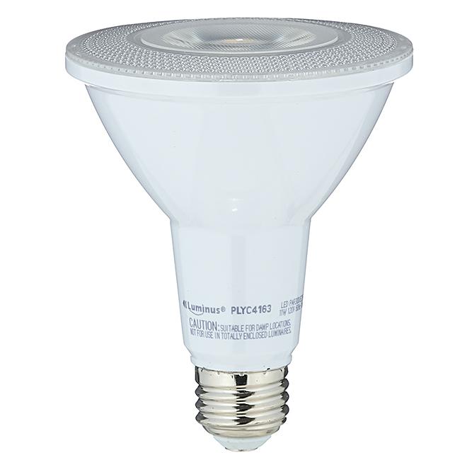 Ampoule DEL, PAR30, 11 W, blanc brillant
