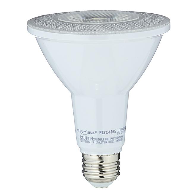 Ampoule DEL, PAR30, lumière du jour
