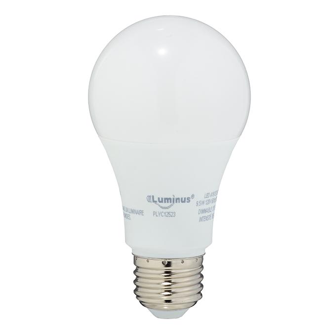 Ampoules DEL A19 9,5W, intensité variable, blanc chaud, pqt/3
