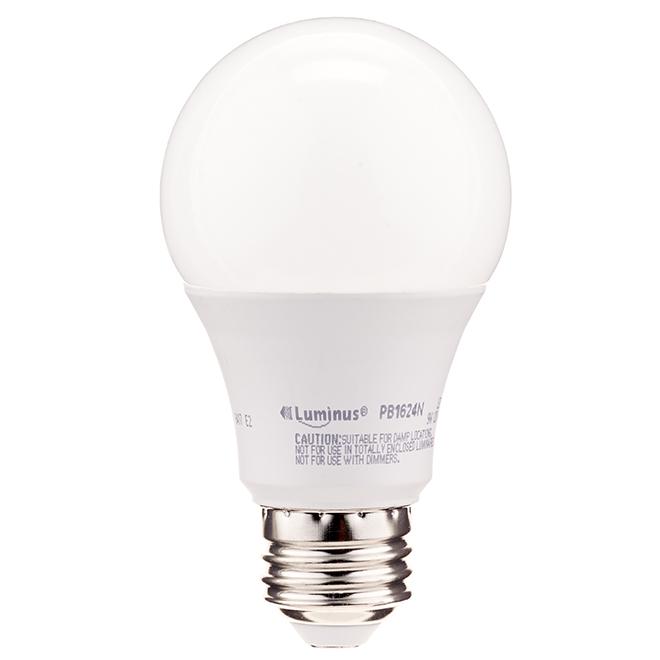 Ampoule DEL A19 9 W, intensité non variable, blanc chaud