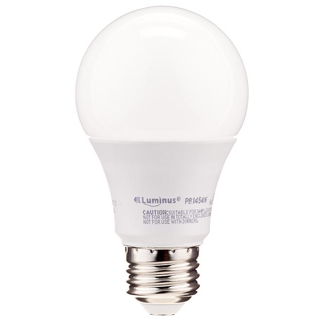 Ampoule DEL A19 6 W, intensité non variable, lum. du jour