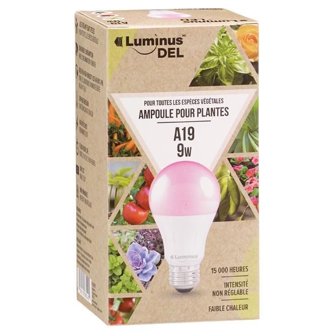 Ampoule DEL A19 9,0 W pour lampe d'horticulture