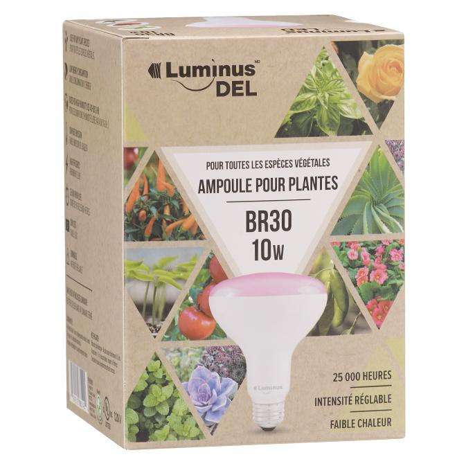 Ampoule DEL BR30 10 W pour lampe d'horticulture