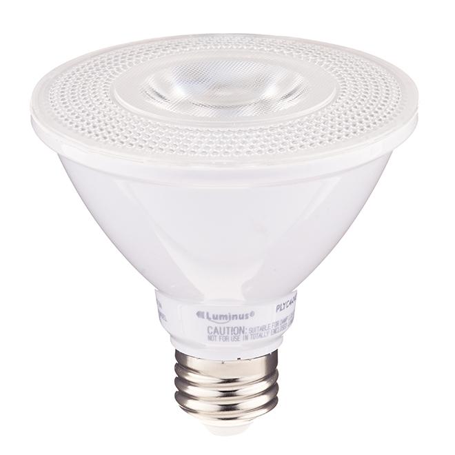 Ampoule DEL, PAR30, blanc doux