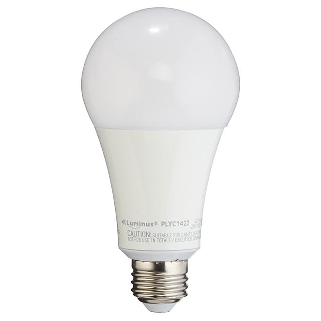 Ampoule DEL A21 20 W, intensité variable, blanc doux