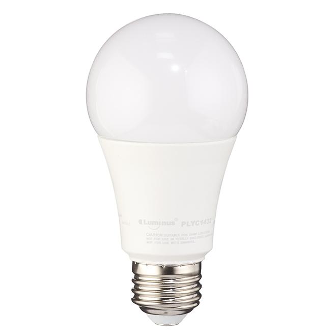 Ampoule DEL A19 15 W, non-variable, blanc doux