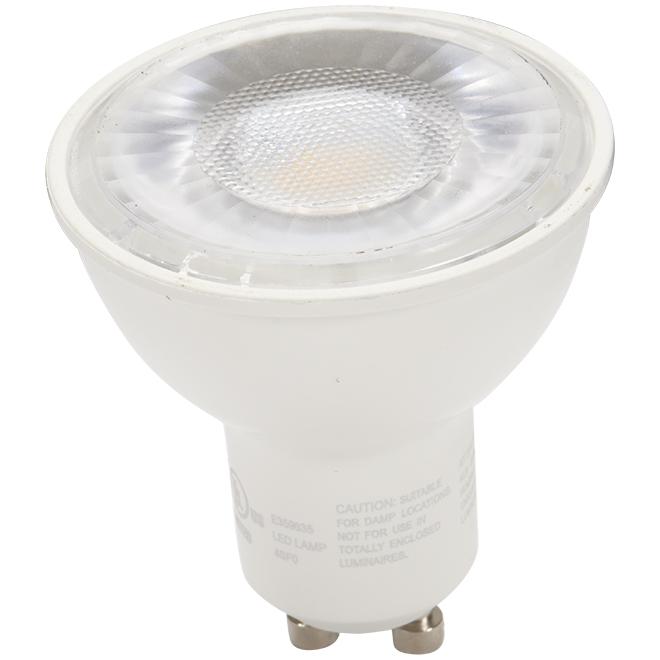 Ampoule DEL 7 W, intensité variable, blanc doux, 2/pqt