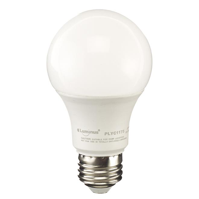 Ampoules DEL A19, 6W, intensité variable, lumière du jour