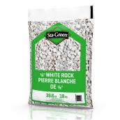 Pierres blanches décoratives Sta Green, 0,50 po, 39,6 lb