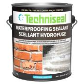 Water-repellent sealer for brick and concrete