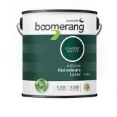 Peinture d'intérieur recyclée Boomerang en latex, fini velours, 3,78 l, conifère