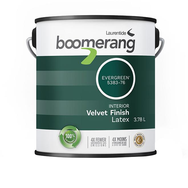 Boomerang Recycled Interior Paint - Latex - Velvet Finish - 3.78 L - Evergreen