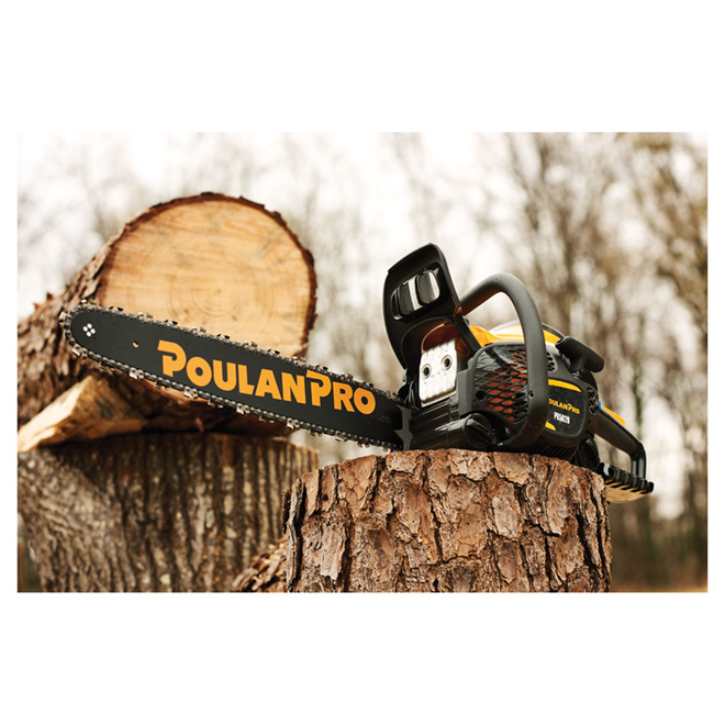 POULAN Gas Chainsaw - 20