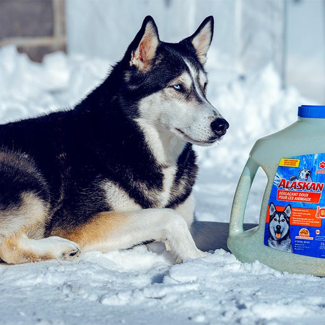 Alaskan Pet Friendly Ice Melter Jug - 3.5 kg