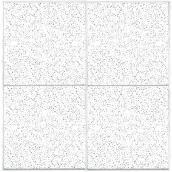 """FC-224"" Ceiling Tiles"