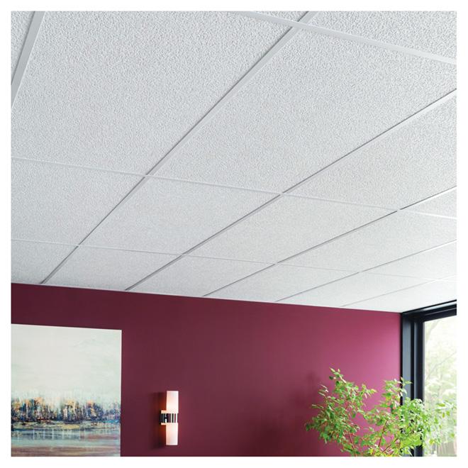 CertainTeed Ceiling Tile - Horizon - White - 2' x 4'