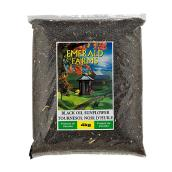 Black Oil Sunflower Bird Seed - 4 kg Bag