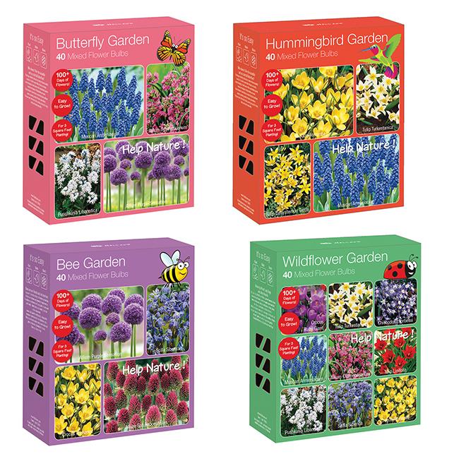 Assorted Flowering Bulbs - 40 Bulbs Box