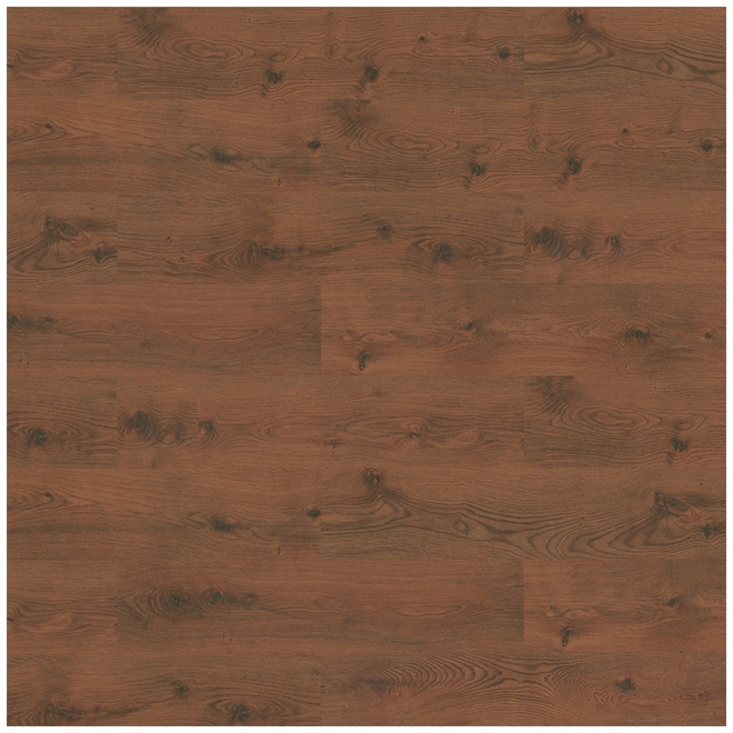 Laminate Flooring 8mm - Megaloc - Swamp Oak
