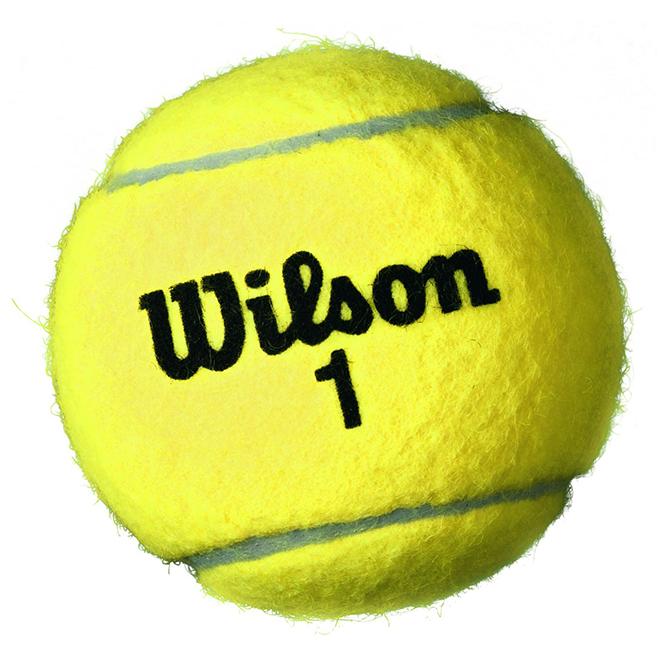 Balles de tennis, championnat, feutre normal, paquet de 3