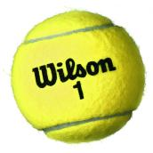 Tennis Balls - Championship - Regular Felt - 3 Pack