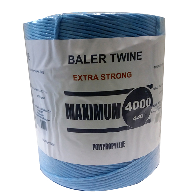 Poly Twine -  Blue - 4000'