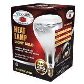 Ampoule infrarouge pour couveuse 250 W, PAR38, transparente