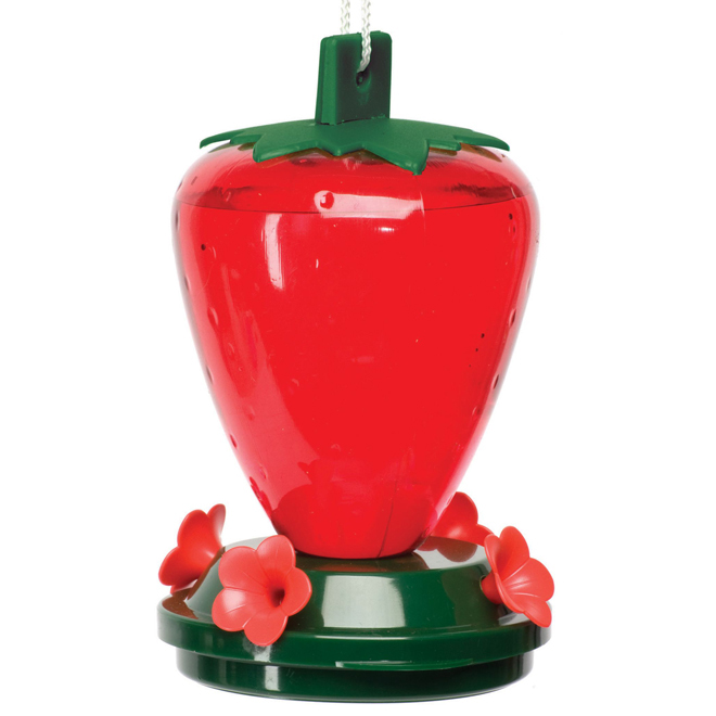 Strawberry Hummingbird Feeder - 28oz