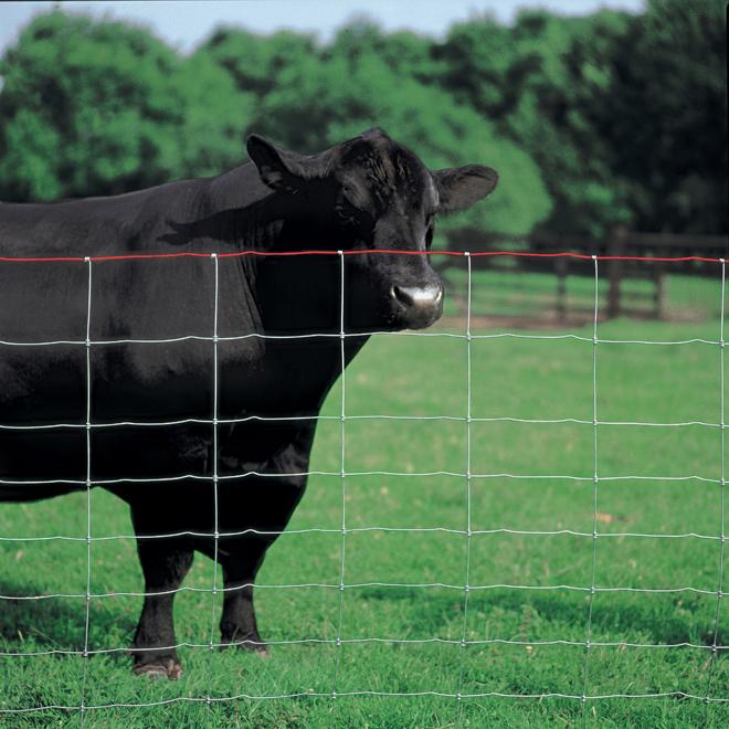 "Cross Lock Fence - 9 3/4 GA -  Class 1 Galv. - 48"" x 330'"