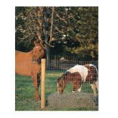 Grillage sans prise de montée pour chevaux, 48
