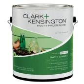 Exterior Paint + Primer - Latex Satin Finish - 956 mL