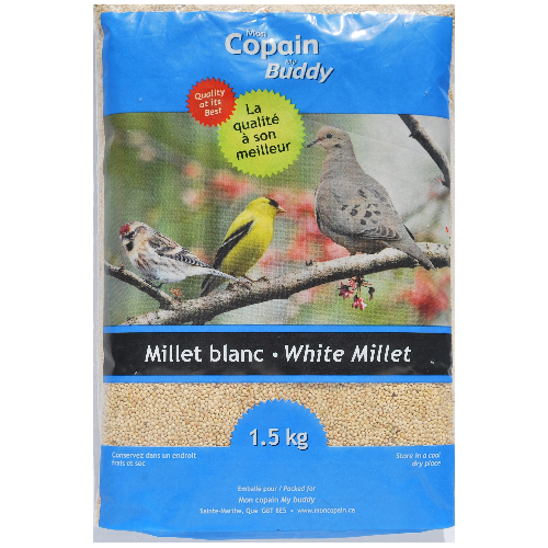 White Millet Wild Bird Food - 1.5 kg